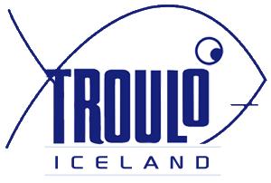 logo_iceland